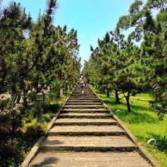 #taiwan #淡水  旅人 ~ 拍攝地點: 緣道觀音廟
