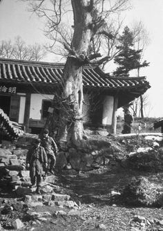 Soldiers patrolling a deserted Korean house during the Korean war. February 1951