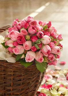 Pink Flowers : Basket of Fresh Cut Roses - Flowers.tn - Leading Flowers Magazine, Daily Beautiful flowers for all occasions My Flower, Fresh Flowers, Pretty Flowers, Pink Flowers, Pink Tulips, Cut Flowers, Rosa Rose, Deco Floral, Colorful Roses