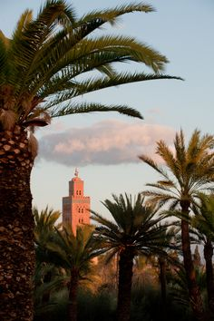 From the #gardens of the #RoyalMansour, you will see the #beautiful Koutoubia mosque.
