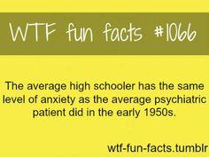 Fact 1066
