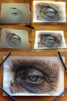 Draw Human Eyes Hyperrealistic Color Pencil Drawings of Eyes - My Modern Metropolis - There's something mesmerizing about eyes that we just can't seem to get enough of and now AtomiccircuS, aka Dino Tomic, can be added to our growing list Eye Pencil Drawing, Realistic Eye Drawing, Pencil Drawings, Art Drawings, Drawing Step, Drawing Ideas, Hyperrealistic Drawing, A Level Art, Color Pencil Art