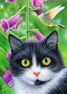 Cats In The Cradle Lyrics Refferal: 7237052256 Cute Animal Drawings, Cute Animal Pictures, What Cats Can Eat, Cat Character, Cat Wallpaper, Cat Drawing, Beautiful Cats, Cat Art, Kitsch