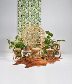 Wij vinden deze rotan pauwenstoel echt te gék! #pauwenstoel #rotan #stoel #kwantum #meubelen #interieur #wonen #botanisch #urbanjungle