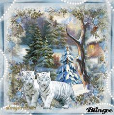 White Tigers/  http://bln.gs/b/27rr0c