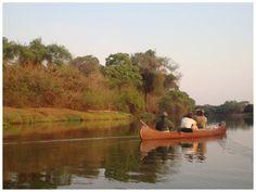 Nah am Wasser gebaut - Safari Insider
