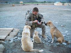 Loin de leurs familles, ces soldats en mission se lient d'amitié avec les animaux