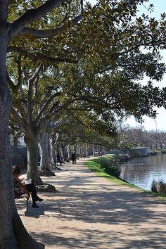Yarra River Pathway, Victoria, Melbourne, Australia
