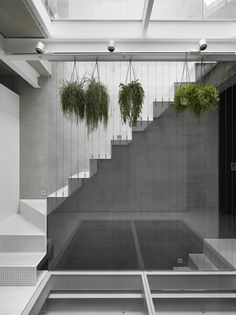 kc design studio house w renovation taiwan designboom