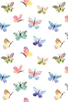Mariposas en colores