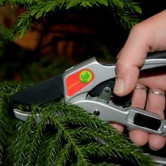 TGF Launching Hand Pruners in Several New Markets