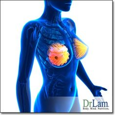 Estrogen dominance and breast cancer Too Much Estrogen, Estrogen Dominance, Hormonal Changes, Breast Cancer, Remedies, Home Remedies