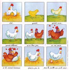De kip en het ei, cyclus - et de l'œuf à la poule ! Animal Activities, Class Activities, Spring Arts And Crafts, Sequencing Pictures, Kindergarten, Picture Composition, Easter Crafts For Kids, School Humor, Life Cycles