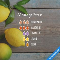 Manage Stress - Essential Oil Diffuser Blend
