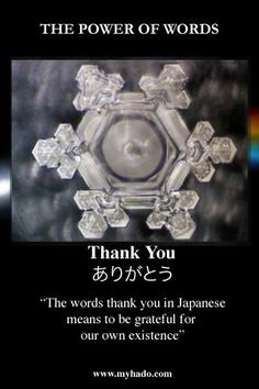 Masaru Emoto - 12 pm on the 11th of each month - pray for water