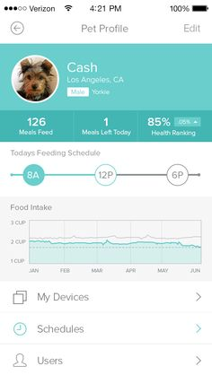 Petnet(io) pet profile screen tells users how many meals were feed to their pet, how many feedings are left in the day and how healthy the pet is.