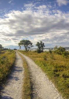 🇸🇪 Country road by the sea (Ekeviken, Isle of Fårö, Gotland, Sweden) [photographer unknown] cr. Beautiful Islands, Beautiful Places, Country Life, Country Roads, Swedish Cottage, Scenery Pictures, Sweden Travel, Heaven On Earth, Norway