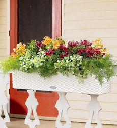 Planting Window Boxes: Flowers, Tips and Ideas on How to Plant a Window Box