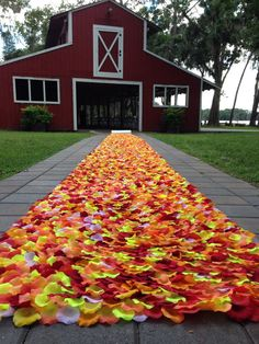 new fall aisle runner by Petale De Rose on Etsy #fall #fallwedding #autumn #fallcolors