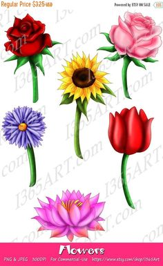 50% OFF Beautifull Flower Clipart, flower clip art, Scrapbook, Party Invitations, Red Rose, Pink Rose, Sunflower, Tulip, Daisy, Lotus, PNG & JPEG - by I365art