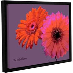 ArtWall Linda Parker Two Gerberas Gallery-wrapped Floater-framed Canvas, Size: 24 x 32, Pink