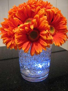 Gerberas atop gel with submerged light