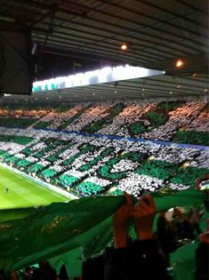 Celtic Park por dentro.