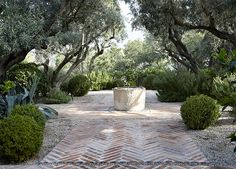 herringbone brick terrace surrounded by gravel planting beds, boxwood balls, olive trees and stone well as a central feature (Shrader Design | Exterior Design