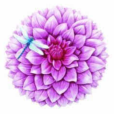 Spoontiques Dahlia Stepping Stone by Spoontiques, Inc. $14.99. Indoor/Outdoor. Stepping Stone/Wall Plaque. Resin & Calcium Carbonate. High quality indoor or outdoor hand sculpted and hand painted decorative resin Wall Plaque or Stepping Stones can be hung on your wall or simply add a welcoming touch to your home, yard or office.