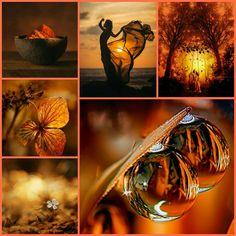 Moodboard: Orangeat, brunt, rött...