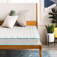 Shop a great selection of LINENSPA 6 Inch Innerspring Mattress - California King. Find new offer and Similar products for LINENSPA 6 Inch Innerspring Mattress - California King. Pillow Top Mattress, Queen Mattress, Best Mattress, Foam Mattress, Comfort Mattress, Mattress Mattress, Latex Mattress, Mattress Cleaning, Twin Daybed With Trundle