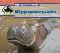 An introduction to the physical characteristics, behavior, and habitat of hippopotamuses.