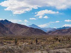 Parque Nacional Los Cardones Road Trip, Mountains, Nature, Travel, Salta, National Parks, Naturaleza, Viajes, Road Trips