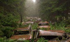 這些車塞在比利時的森林裡…一塞就是70年 | FLiPER 潮流藝文誌