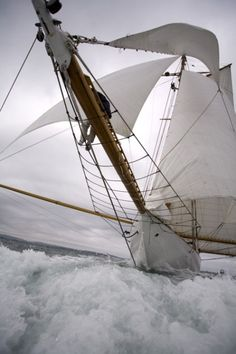 "sailing 'wing and wing' - ""Sail away, sail away, we will cross the mighty ocean and the Charleston bay . "" (Randy Newman ""Sail Away"") Yacht Design, Yacht Boat, Sail Away, Set Sail, Wooden Boats, Tall Ships, Water Crafts, Sailing Ships, Sailing Boat"