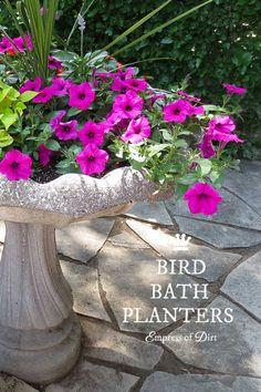Turn a Garden Bird Bath into a Planter
