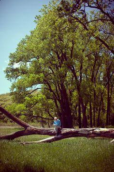 Western Nebraska scenery   Landscape   Trees http://nelovesps.org/