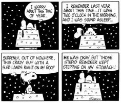 First Appearance: December 1966 Funny Christmas Pictures, Funny Pictures For Kids, Christmas Pics, Peanuts Cartoon, Peanuts Snoopy, Peanuts Comics, Snoopy Love, Snoopy And Woodstock, Peanuts Christmas