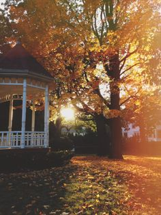 An intense scene could take place at this gazebo. The oranges and reds add to the intensity. Here, it could be an argument, a serious talk, a confession of true - romantic - feelings. Who knows? ~magikodie