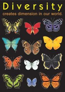 Diversity Creates Dimension In Our World . Poster - Create an inspiring environment and encourage learning and positive character traits with ARGUS Large Posters. With hundreds of value-priced titles, you can display intriguing, new messages often. Diversity Poster, Equality And Diversity, Unity In Diversity, Cultural Diversity, Diversity Quotes, Cultural Competence, We Are The World, Our World, Positive Character Traits