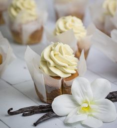 Friday November 10 is Vanilla Cupcake Day. And to celebrate, dessert queen, pastry chef and chocolatier Kirsten Tibballs shares with foodservice her recipe for Tahitian vanilla cupcakes. Baking Cupcakes, Vanilla Cupcakes, Cupcake Recipes, Dessert Recipes, Dessert Ideas, Kitchen Aid Recipes, Baking Recipes, Carrot Spice Cake, Cupcake Day