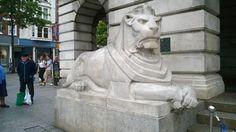 Stone lion,  Nottingham marketplace Stone Lion, Nottingham, Lion Sculpture, Novels, Statue, Art, Art Background, Kunst, Performing Arts