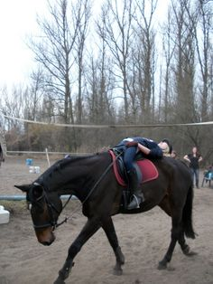 when you set your mind to it, you can do anything (even limbo with your horse!)