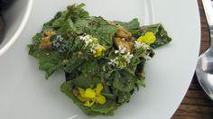 Det handler om jernaldermat. Anne Hjernøe lager først en dip av urter som hun serverer til brød bakt på bål. Så bruker hun halvparten av dippen til å lage dressing til salaten. Oppskriften på levebrød med dip finner du nederst.