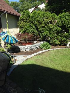 New rock wall with Japanese Maple