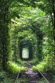 В поселке Клевань (Украина) летом и осенью можно наблюдать Тоннель любви. Участок заброшенной железной дороги окутан листвой. Место любят посещать молодожены. Считается, что желания, загаданные здесь, обязательно сбудутся.