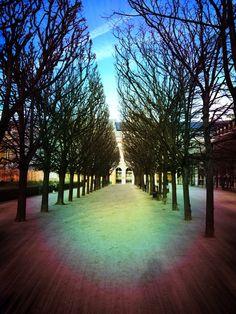 Palais Royal Jardin