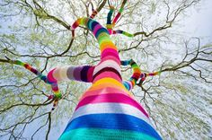 yarn bombed tree #street #art