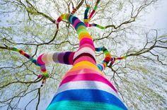 yarn bombed tree #street #art