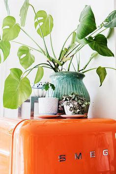 elsa billgren's bright orange smeg fridge and potted plants | sfgirlbybay